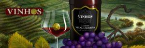 Vinhos de Vital Lacerda: gérer son petit vignoble, c'est pas si simple que ça !