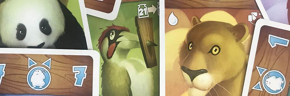 Cartes du jeu Noé chez Bombyx